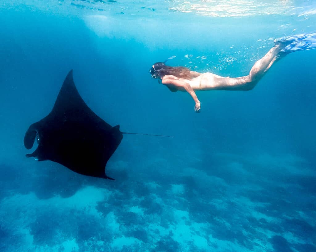 Women Diving with Manta Ray in Komodo National Park