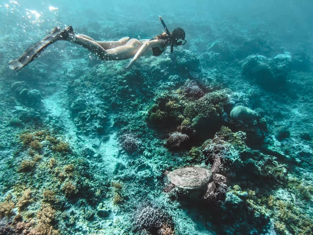 Women is snorkeling with sea turtle on Gili Air