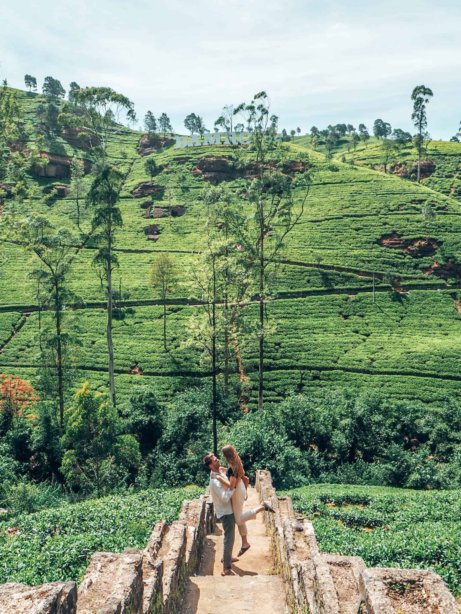 Couple in front of Tea fields at Damro Tea Plantation Nuwara Eliya