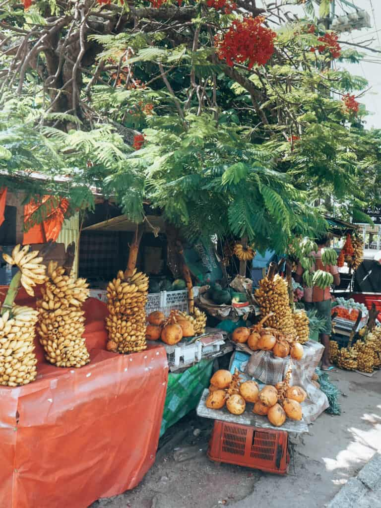 Fruit stall in Negombo Sri Lanka