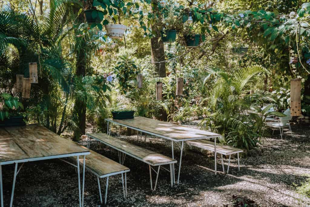LUV Burger seating area with benches at Nosara Costa Rica