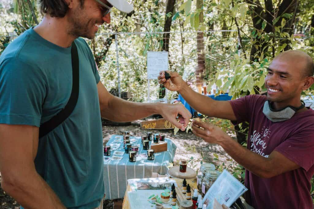 Shop Moringa Products at Nosara Market
